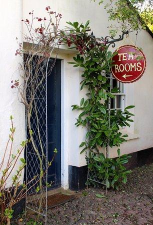 Williton, UK: Cream teas and delicious cakes in the Bakelite tea rooms.
