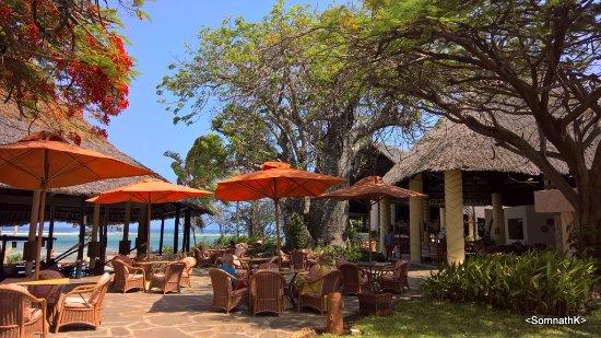 Baobab Beach Resort & Spa: Pool side bar, unlimited drinks