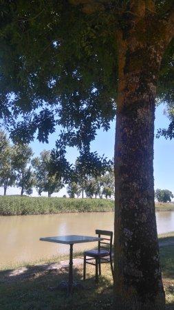 Saint Fort sur Gironde, France: Dîner ou déjeuner au bord du chenal, en pleine nature sous les arbres