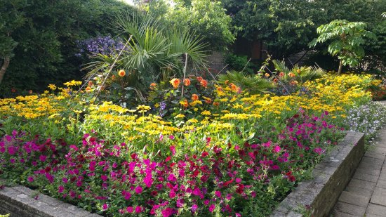 Astonishing Manor House Gardens Bexhill August 2017 Picture Of Manor Download Free Architecture Designs Rallybritishbridgeorg
