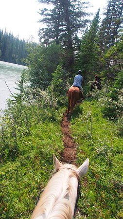 Old Entrance Trail Rides: Tex