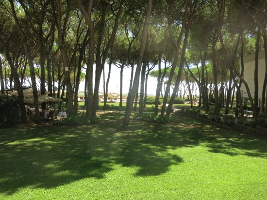 Hotel Resort Bellevue: Garten Richtung Meer (Zimmerblick)