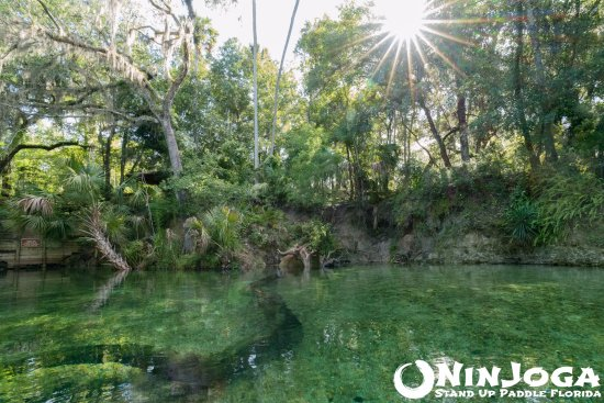 Orange City, FL: Beautiful Blue Springs State Park