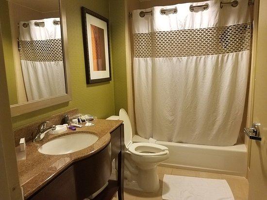 Hampton Inn & Suites Denver Downtown: bathroom 2 in room with bunkbeds