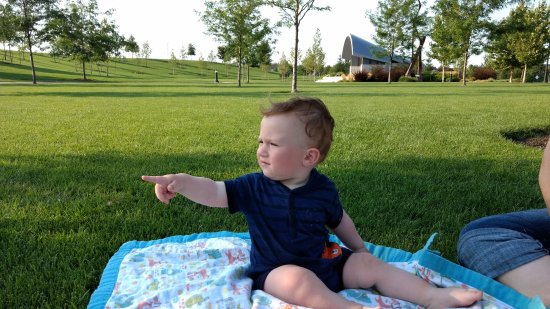 Meridian, ID : Baby watching kid play volleyball
