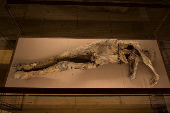 Monsampolo del Tronto, Itália: corpo mummificato uomo