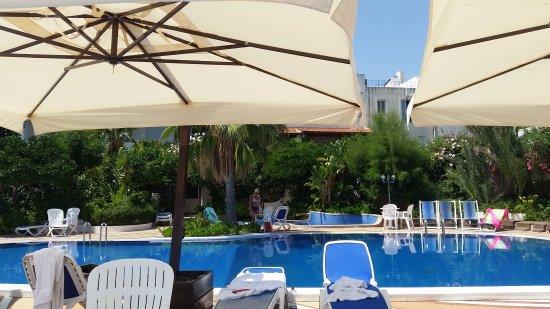 Hotel Giardino sul Mare: 20170804_125652_large.jpg