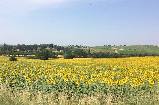 Senouillac, Francia: La vie à la Bastide