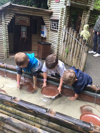 Watermouth Family Theme Park & Castle: IMG-20170807-WA0009_large.jpg