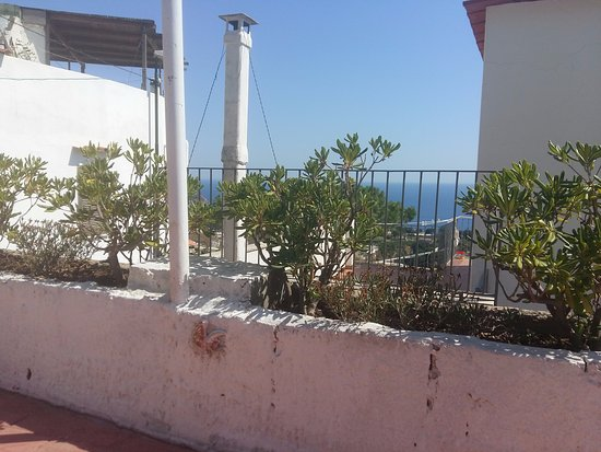Hotel Bellavista: Vista dalla piscina