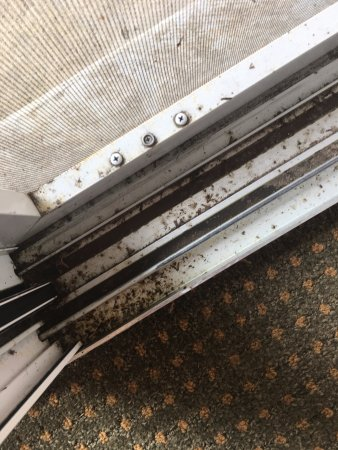 Green Lake, WI: patio doors full of dirt, mold, and bugs