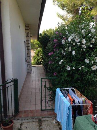 Taunus Villaggio照片