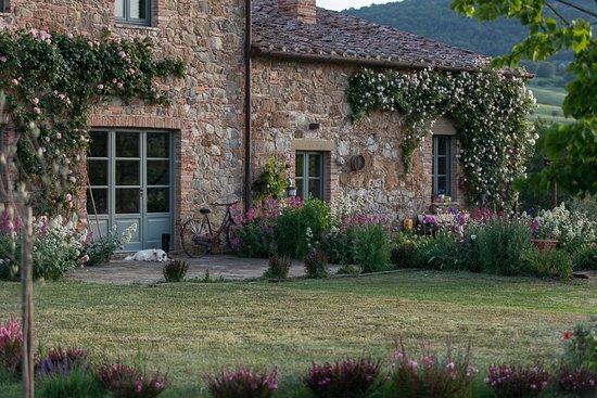 Follonico: Garden corners