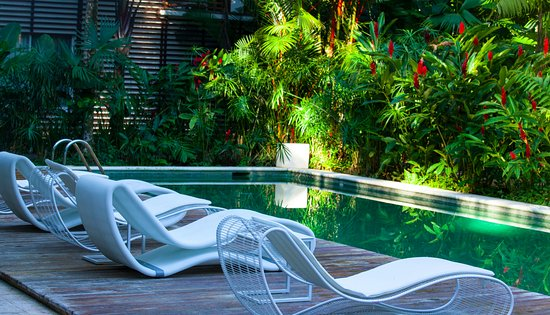 Cocles, Costa Rica: Pool Area