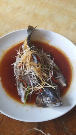 Dunhuang Best Tasting Fish Ever Picture Of Silk Road China Tours