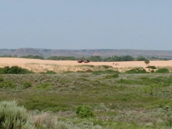 Waynoka, OK: ATV on smaller dunes