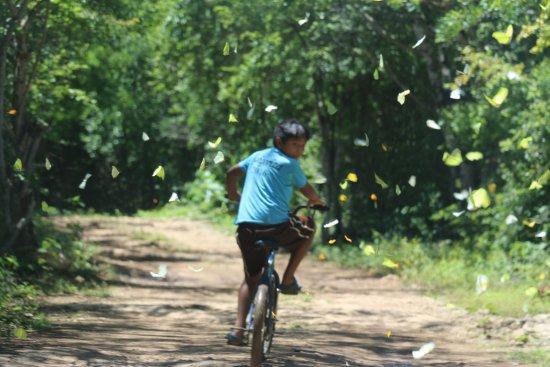 Tecoh, Mexico: Diego, notre guide d'un jour