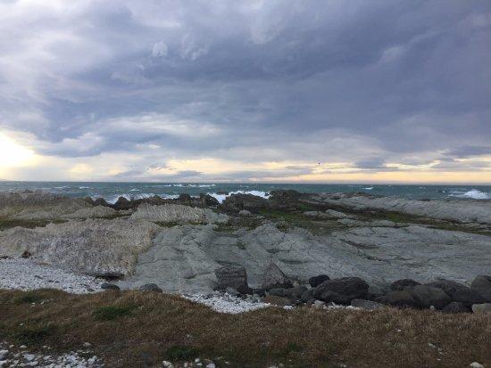Kaikoura, Nueva Zelanda: A view of the seal colony