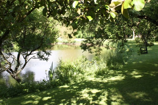 Thurnham, UK: Pond in the grounds