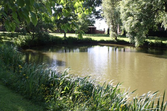 Thurnham, UK: Pond