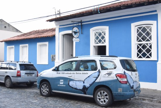 Instituto Baleia Jubarte - Patrocínio Petrobras