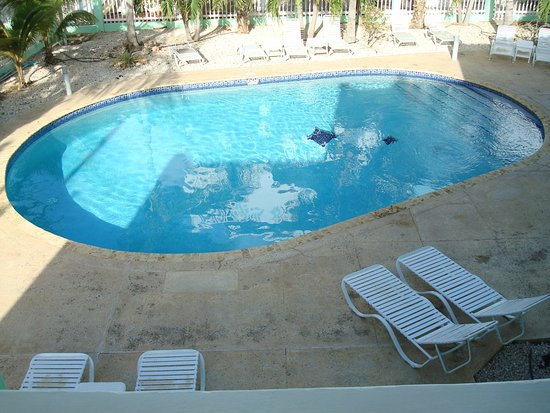 Coral Paradise Resort: That's the pool!