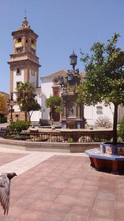 Plaza Alta: August 2017, plus pigeon