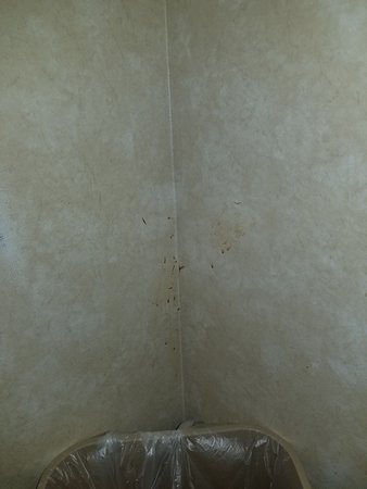 Comfort Suites Independence: gross things stuck to wallpaper