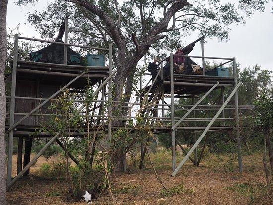 Rhino Walking Safaris at Plains Camp: photo8.jpg
