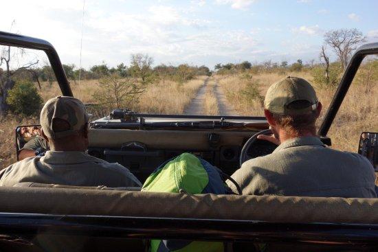 Rhino Walking Safaris at Plains Camp: photo9.jpg