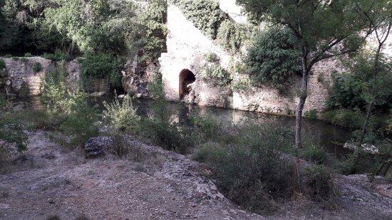 Grabels, Francia: Source de l'Avy