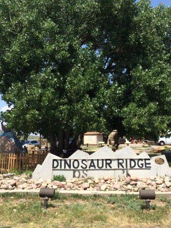 Dinosaur Ridge: photo9.jpg