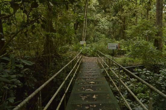 Savegre Hotel, Natural Reserve & Spa: Interpretive Trail