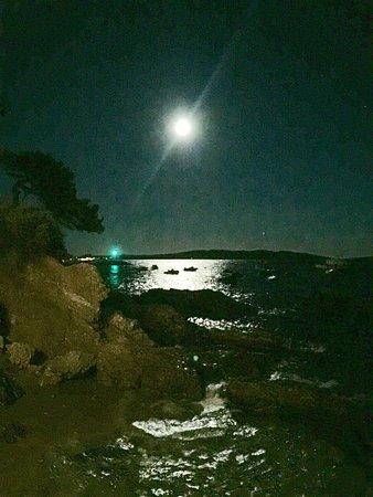 Côte d'Azur Observatory: Прекрасные места для романтического отдыха. Как всегда Лазурное побережье радует.