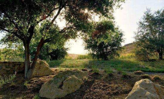 Irvine, CA: Quail Hill