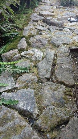 Exceptionnel Nel Centro: Patio Rocks