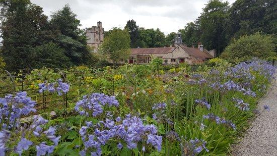 Ashford-in-the-Water, UK: Thornbridge Hall Gardens