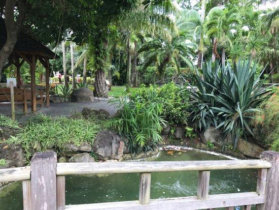 Le restaurant est au dessus de la cascade obr zek for Restaurant jardin botanique