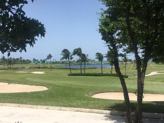 Ocean Club Golf Course : photo1.jpg