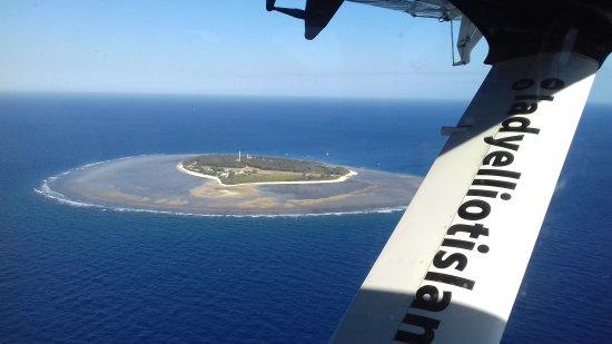 Lady Elliot Island, Australia: 20170802_084932_large.jpg