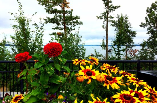 Sylvan Lake Provincial Park