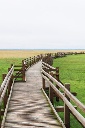 Liepaja, Latvia: The wooden path leading up to the tower