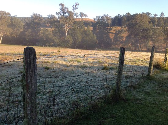Killarney, Australië: Frosty paddocks