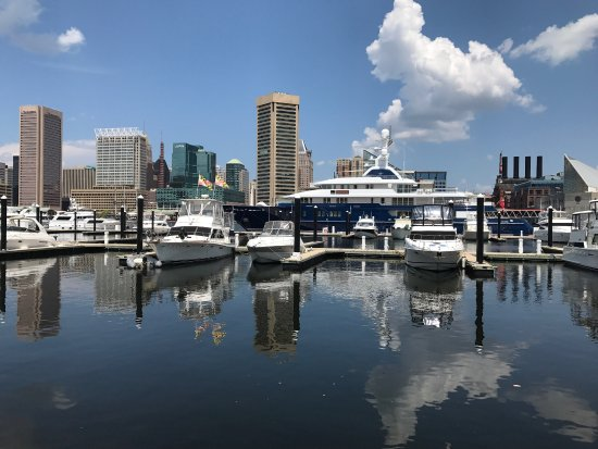 Inner Harbor: photo5.jpg