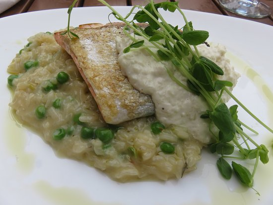 Salmon With Green Pea Risotto Picture Of Saltlik Banff