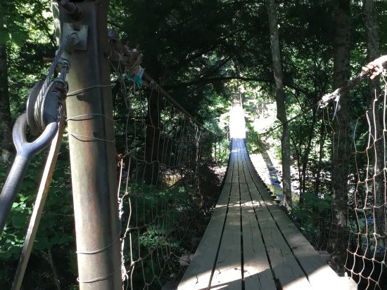 Spencer, TN: The suspension bridge behind the Nature Center