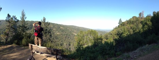 Uvas Canyon County Park: on top of the summit