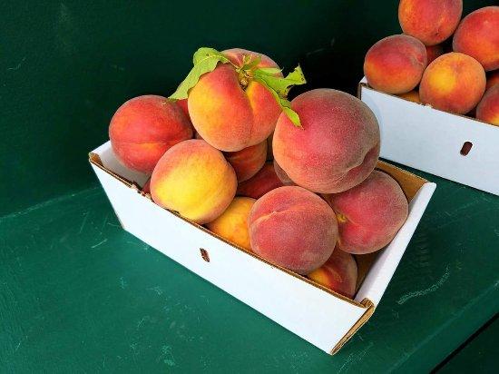 Walpole, NH: Alyson's Orchard