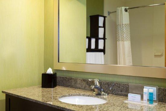 Elkton, MD: Guest Room Bathroom
