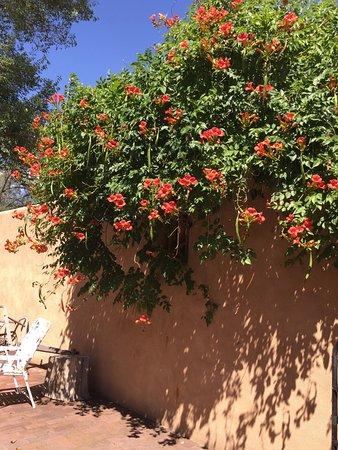 Chimayo, NM: Beautiful Exterior